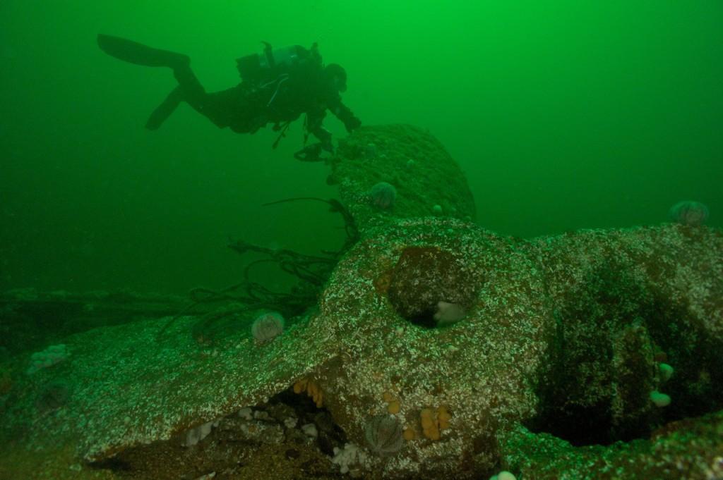 Diver with prop