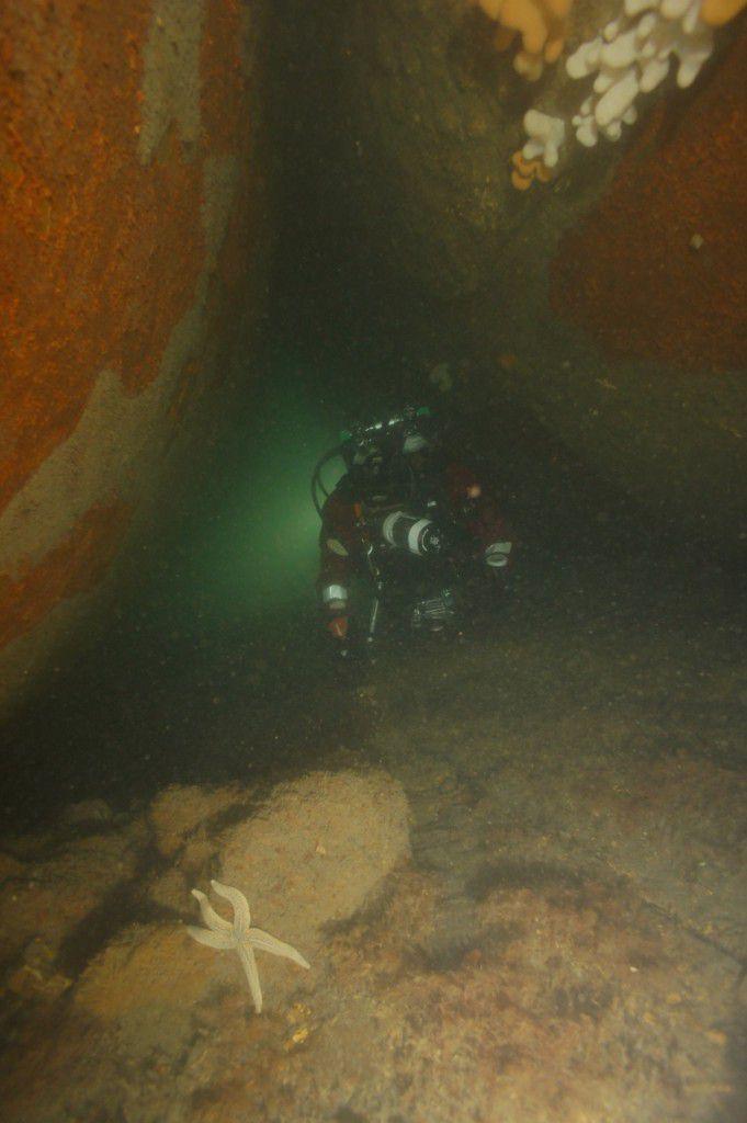 Diver between boiulers