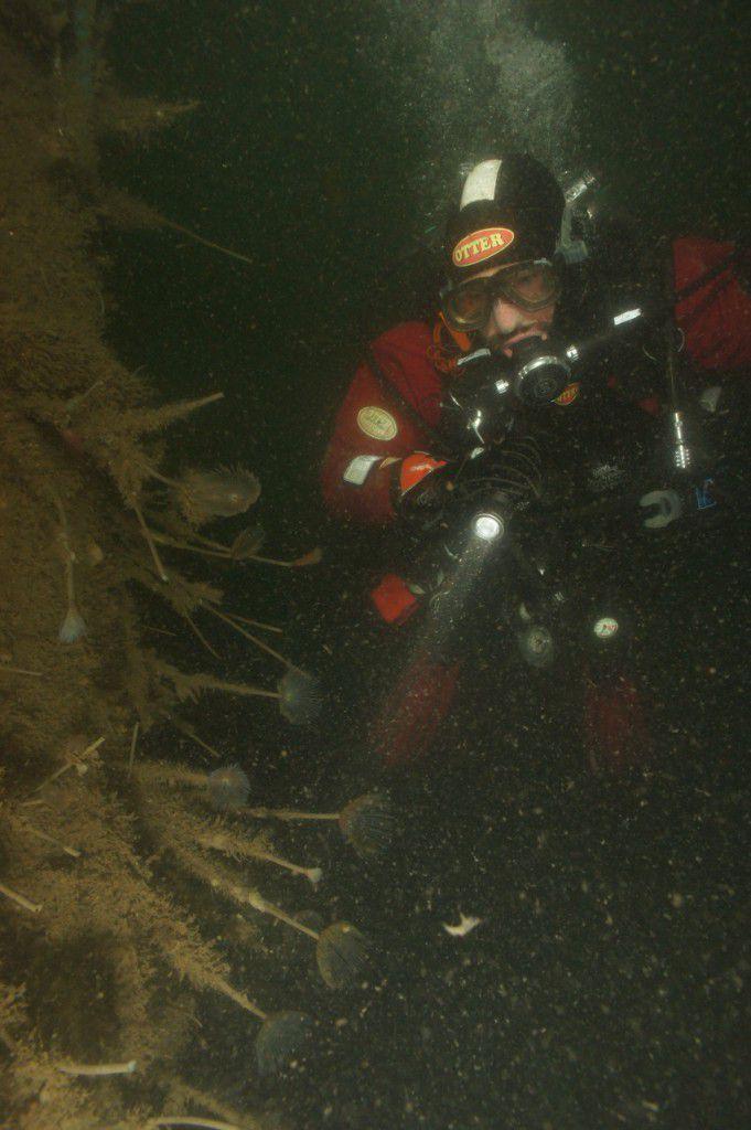 Diver in dark