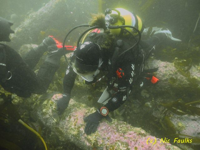 Diver with cannon
