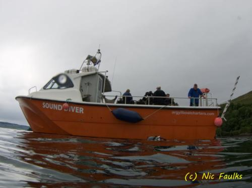 Sound diver, our chariot!
