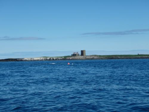 Gun Rocks off Inner Farne
