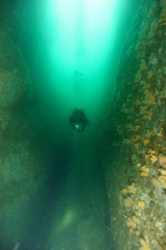Walls shetland